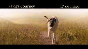 A Dog's Journey - Alternate Trailer 12