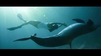 Atlantis TV Spot, 'Welcome to Atlantis: 5th Night Complimentary' - Thumbnail 6