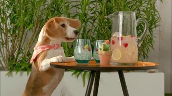 Pier 1 Imports TV Spot, 'Refresh Your Outdoor Space' - Thumbnail 4