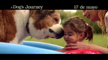 A Dog's Journey - Alternate Trailer 11