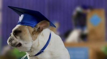 Blue Buffalo TV Spot, 'Graduates' - Thumbnail 1