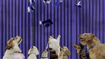 Blue Buffalo TV Spot, 'Graduates'