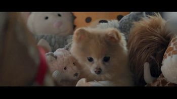 Wells Fargo TV Spot, 'Lulu and Lobo Need a Bigger Place' - Thumbnail 5