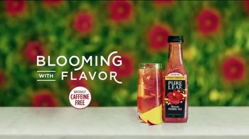 Pure Leaf Mango Hibiscus Herbal Ice Tea TV Spot, 'Blooming With Flavor' - Thumbnail 7