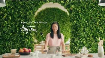 Pure Leaf Mango Hibiscus Herbal Ice Tea TV Spot, 'Blooming With Flavor' - Thumbnail 1