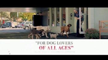 A Dog's Way Home - Alternate Trailer 34