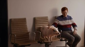 GEICO TV Spot, 'Animal Planet: Casting the Puppy Bowl' - Thumbnail 10
