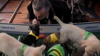 GEICO TV Spot, 'Animal Planet: Directing the Puppy Bowl Easy' - Thumbnail 6