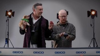 GEICO TV Spot, 'Animal Planet: Directing the Puppy Bowl Easy' - Thumbnail 8
