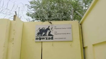 Nowzad TV Spot, 'People Who Love Animals' - Thumbnail 5