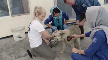 Nowzad TV Spot, 'People Who Love Animals' - Thumbnail 7