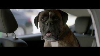 BPMe App TV Spot, 'Rex'