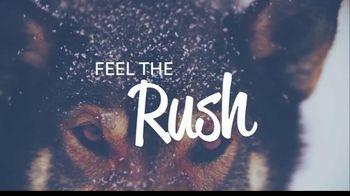 Visit Cook County TV Spot, 'Feel the Rush' - Thumbnail 1