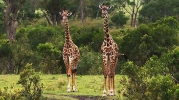Metro by T-Mobile TV Spot, \'Giraffes\' Song by Usher