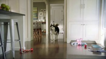 Wells Fargo TV Spot, 'Designer Dog Collar' - Thumbnail 8
