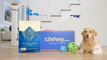 Chewy.com TV Spot, 'Bentley & Olive' - Thumbnail 10