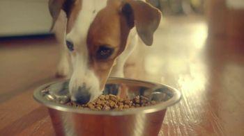 University of Florida Health TV Spot, 'Problem Solvers: Dog Food' - Thumbnail 7