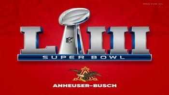 Anheuser-Busch Super Bowl 2019 Teaser, 'Announcement' - Thumbnail 4