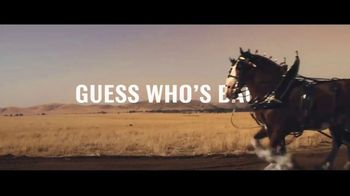 Budweiser Super Bowl 2019 Teaser, 'Guess Who's Back?' - Thumbnail 4