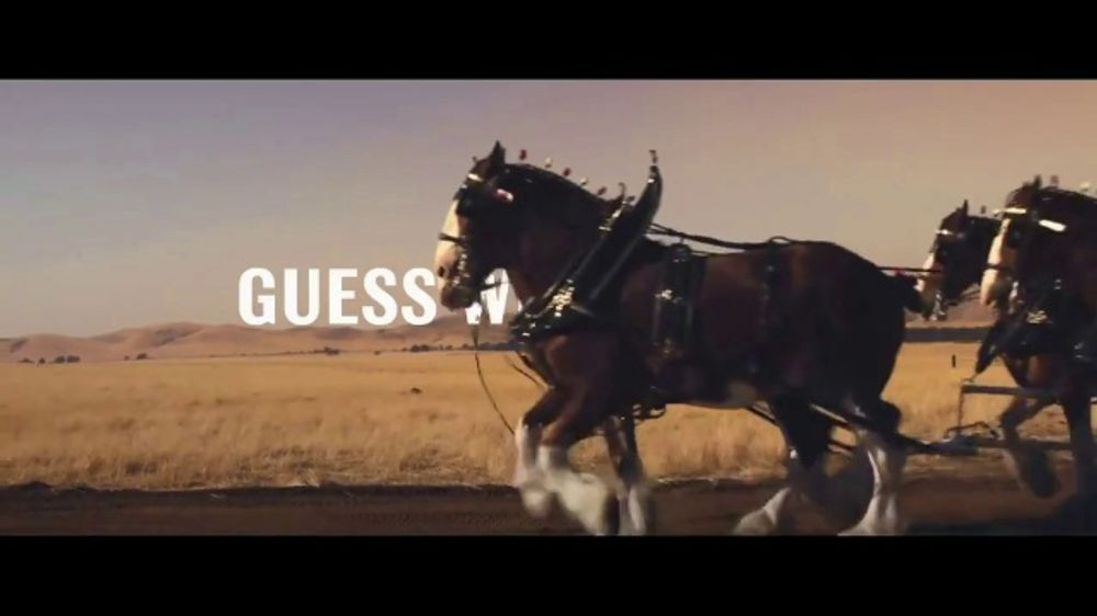Budweiser: Teaser: Guess Who's Back?