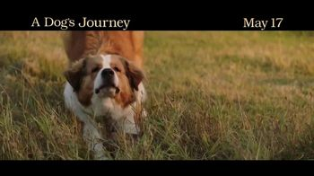 A Dog's Journey - Alternate Trailer 3