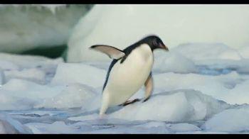 Penguins - Alternate Trailer 24