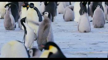 Penguins - Alternate Trailer 20