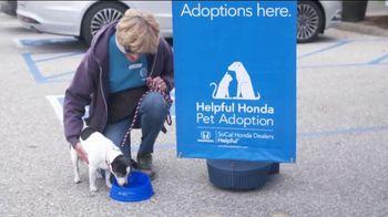 Honda TV Spot, 'Random Acts of Helpfulness: Ventura Animal Services' [T2] - Thumbnail 6