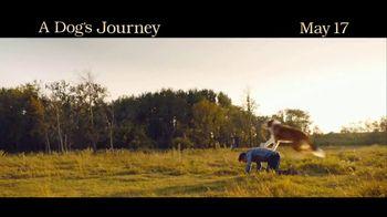 A Dog's Journey - Alternate Trailer 2