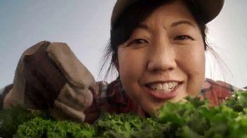Panera Bread TV Spot, 'What a Salad Should Be' - Thumbnail 5