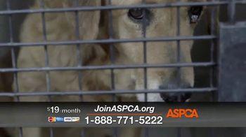 ASPCA TV Spot, 'In the Next Minute' - Thumbnail 6