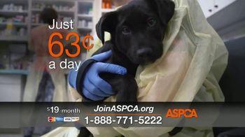 ASPCA TV Spot, 'In the Next Minute' - Thumbnail 4