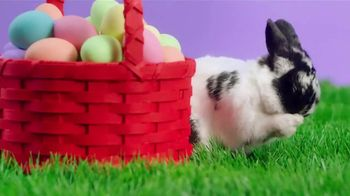 JCPenney Easter Sale TV Spot, 'Dresses, Shoes and Sport Coats' - Thumbnail 10
