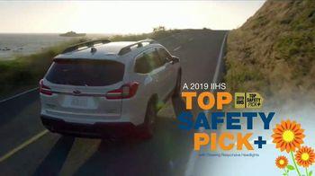 Subaru Love Spring Event TV Spot, 'Great Deal: 2019 Ascent' [T2] - Thumbnail 9