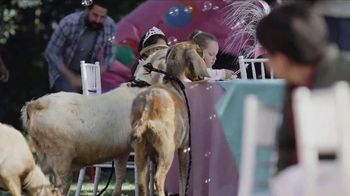 AT&T Fiber and DIRECTV TV Spot, 'Princess and Pony Bundle'