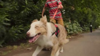 Off! FamilyCare Smooth & Dry TV Spot, 'Walk the Dog Your Way' - Thumbnail 6