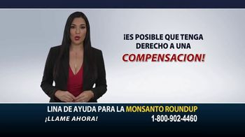 Heygood, Orr and Pearson TV Spot, 'Monsanto Roundup' [Spanish] - Thumbnail 6