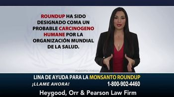 Heygood, Orr and Pearson TV Spot, 'Monsanto Roundup' [Spanish] - Thumbnail 2