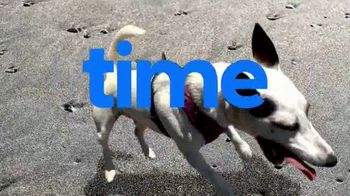 Royal Canin TV Spot, 'Animal Planet: Meet Max' - Thumbnail 4