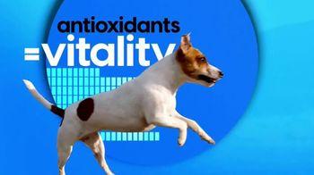 Royal Canin TV Spot, 'Animal Planet: Meet Max' - Thumbnail 8