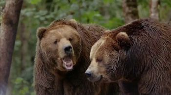 Metro by T-Mobile TV Spot, 'Bears: Amazon Prime: $30' Song by Usher