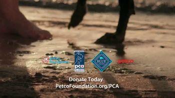 PETCO Foundation TV Spot, 'Pet Cancer' - Thumbnail 10