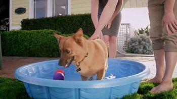 PETCO Foundation TV Spot, 'Pet Cancer' - Thumbnail 4