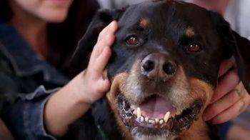 PETCO Foundation TV Spot, 'Pet Cancer' - Thumbnail 5