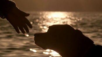 PETCO Foundation TV Spot, 'Pet Cancer' - Thumbnail 8