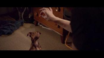 A Dog's Way Home - Alternate Trailer 2