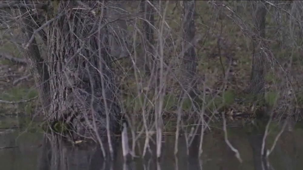 Realtree TV Commercial, 'Concealed'
