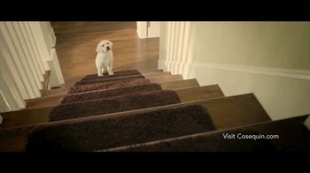 Cosequin TV Spot, 'Joint Health Supplements for Your Dog' - Thumbnail 1