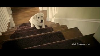 Cosequin TV Spot, 'Joint Health Supplements for Your Dog' - Thumbnail 2