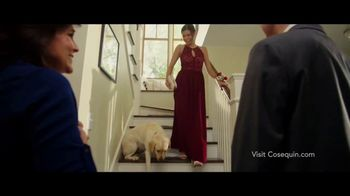 Cosequin TV Spot, 'Joint Health Supplements for Your Dog' - Thumbnail 4